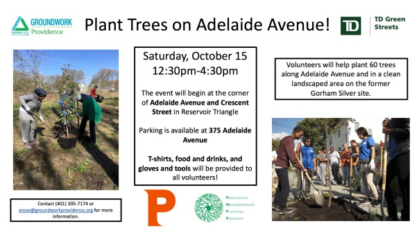 flyer-adelaide-avenue-fall-planting